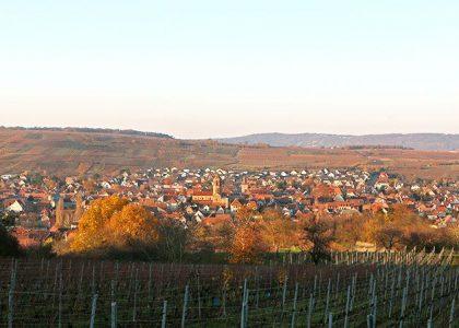 Mairie de Rosheim - img