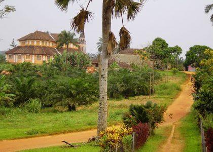 Centre Adèle Akono - img